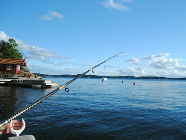 fishing in sweden