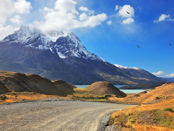 winding road with lake and mountains in torres del paine