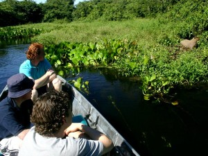 people in boat on amazon spotting wildlife