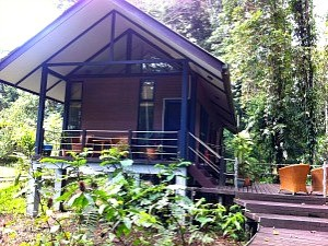 bungalow in jungle borneo