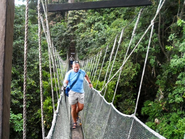 man walking over canopy bridge in Borneo