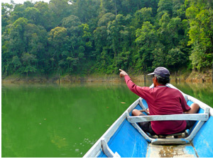 Man on jungle river boat