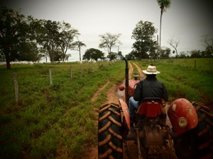 farmer on a tractor in the pantanal in Brazil