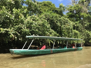 Dainty, green boat doing an excursion in Tortuguero national park
