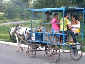 locals travelling by horse and cart