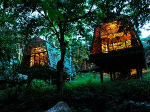 Jungle lodge accommodation in Tabin, Malaysia