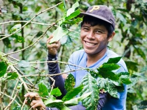 Farmer with coffee beans in Nicaragua