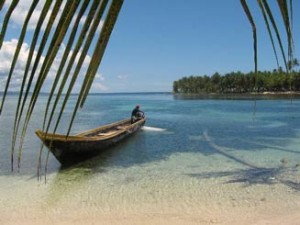 View of a row boat floating in the ocean from behind a palm leaf in Panama