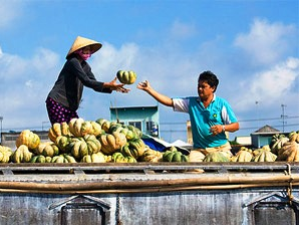 Floating Market & Cycling on Tiger Island