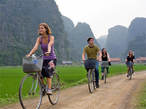Group of People cycling amongst the rice paddies
