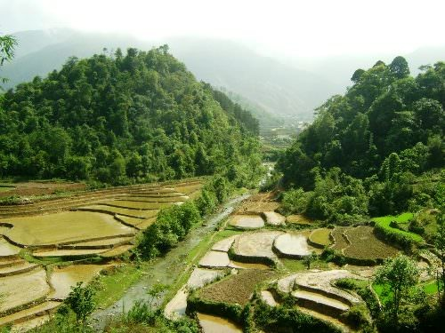 View of luscious and green valley in Sapa Vietnam