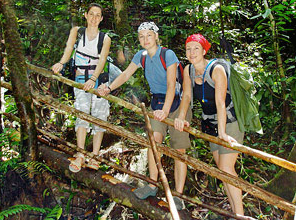 Borneo customers trekking in jungle