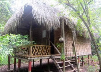 Bungalow in the garden/forest