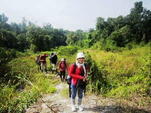 Group of people trekking through the Cardamom mountains in Cambodia