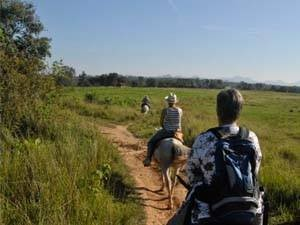 Horseback tour through Cuba's nature