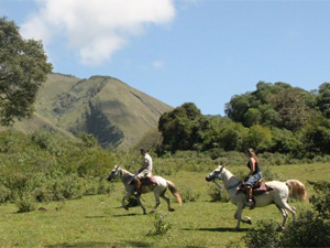 Salta - Full Day Gaucho Experience
