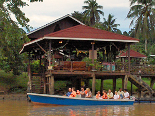 Alternative Trip Option: Orangutans, Turtle Eggs and a Jungle Boat Cruise