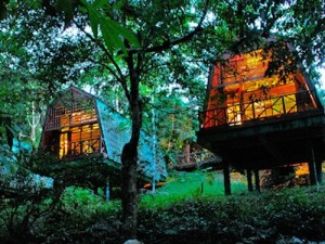 Jungle lodges in Borneo