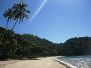 View of sunnay, sandy beach and shoreline in Ilha Grande Brazil