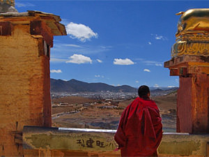 Monk standing by temple