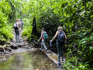 Staff in Corcovado crossing a stream in a jungle excursion in Costa Rica