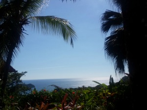 Palm trees draped over the view with blue sky and sea in the background in Manuel Antonio