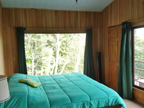 Green and wood walled bedroom in Cala Lodge accommodation Costa Rica