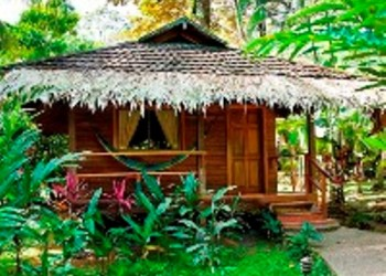 wooden bungalow in gardens