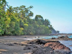 Snorkelling Coves & Tropical Rainforests