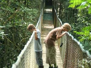 Into the Cloud Forests of Monteverde