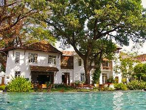 India Hotel outdoor swimming pool with big trees