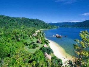 View of tree lined and sandy coast of Cubadak Island beach, Sumatra in Indonesia