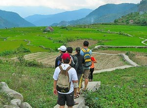 People trekking through rice paddies in Laos