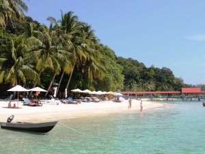 Beach with palm trees and small fishing boats