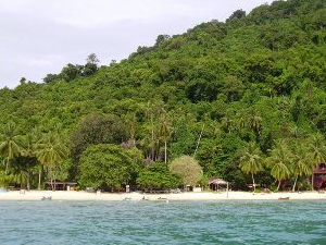 View of the Tioman jungle from out at sea