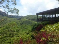 View from Cameron highlands, Malaysia