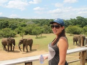 Woman standing in front of elephants in South Africa