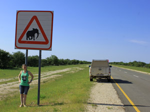 elephant sign in south africa