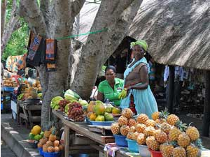 south african women selling fruits at market