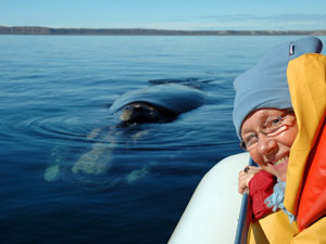 Rickshaw customer looking out of a boat with a whale in the water beside her
