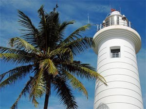 White lighthouse and palm tree