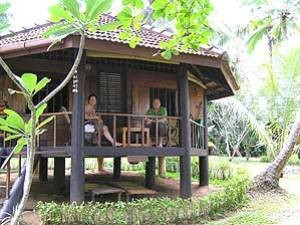 Cabana in the garden of the accommodation