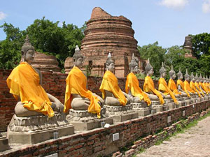 A row of yellow robed buddha statues in Ayutthaya in Thailand