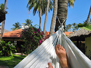 India hammock hanging in palm trees