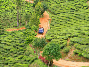 Departure from the Cameron Highlands