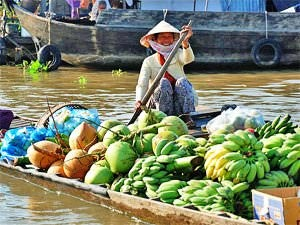 Mekong local woman on barge with fruit