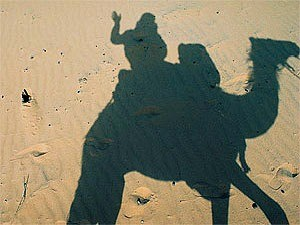 shadow of person riding camel in the sand morocco