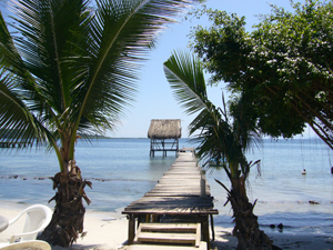 beach with palm trees and jetty