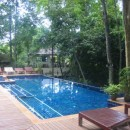 Pool with seats and trees
