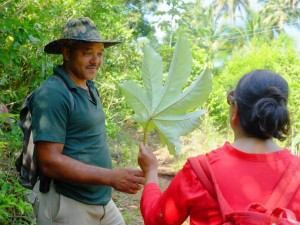 guide with traveller in cuba